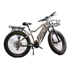 Lelli Cheap 48v 750w 1000w Belt Driven Mid Motor Fat Tire Electric Bike