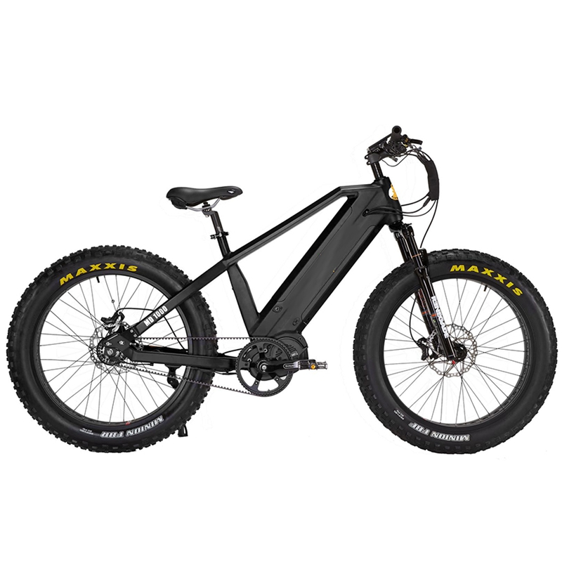 2020 New Dual Battery 48V 1000W Cheap Mid Drive Fat Tire Electric Bike Mountain Ebike Fat Bike Electric Bicycle